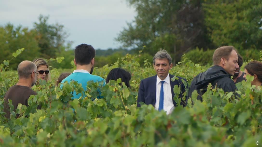Visite des vignes de l'AOC Montlouis-sur-Loire